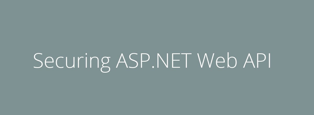 4elements | web design Den Haag blog • Securing ASP.NET Web API