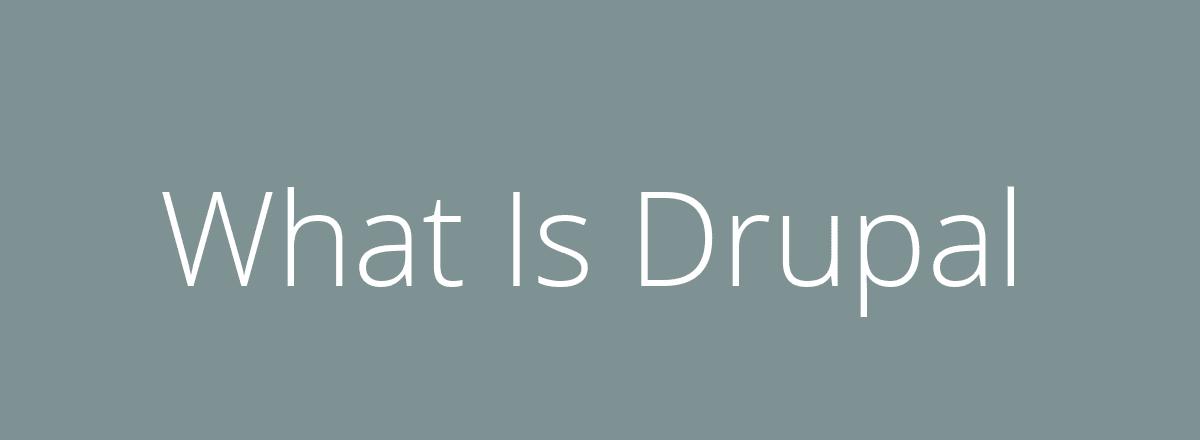 4elements   web design The Hague blog • What Is Drupal?